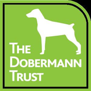 TDT_Logo_v3