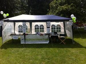 The Dobermann Trust Fundraising